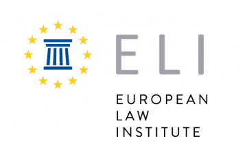 The Chairperson of Law and Internet Foundation's  - a member of the European Law Institute